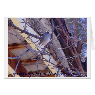 Greetings From New Mexico.... Greeting Card