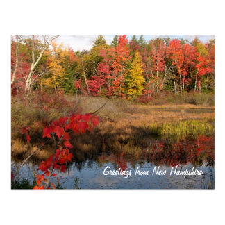 Greetings From NH Fall Postcards