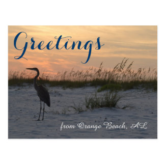 Greetings from Orange Beach, AL Postcard