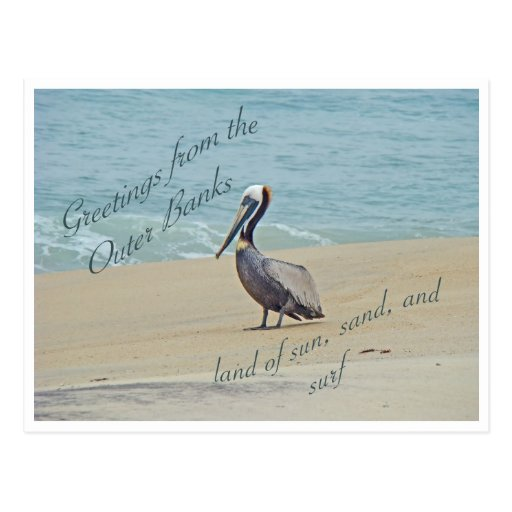 Greetings From Outer Banks OBX NC Postcard