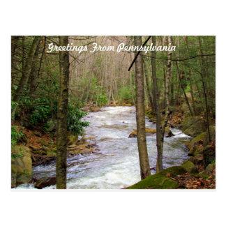 Greetings From Pennsylvania Postcard