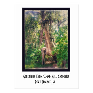 Greetings From Sugar Mill Gardens Postcard