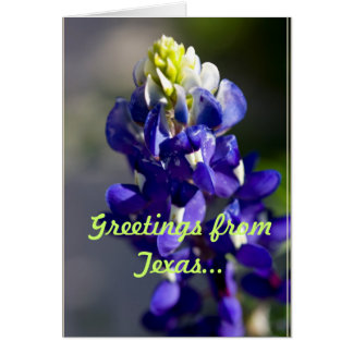 Greetings from Texas... Greeting Card