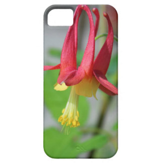 Gretchen's Heart iPhone 5 Cases