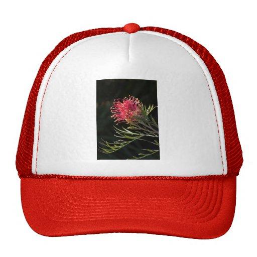 """Grevillea """"Silvia"""" Hat"""
