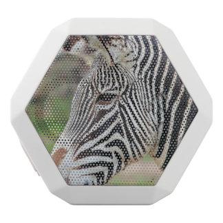 Grevy's Zebra White Boombot Rex Bluetooth Speaker