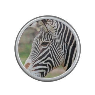 Grevy's Zebra Bluetooth Speaker