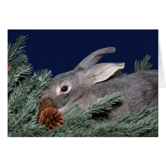 Grey bunny in pine card