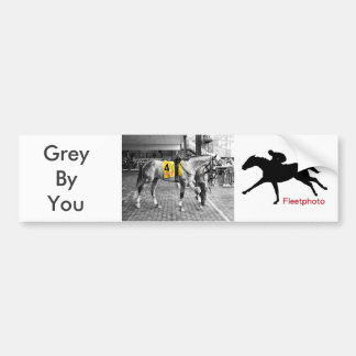 Grey by You Bumper Sticker