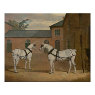Grey Carriage Horses in The Coachyard - Herring Print