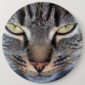 Grey Cat Face Closeup 6 Cm Round Badge