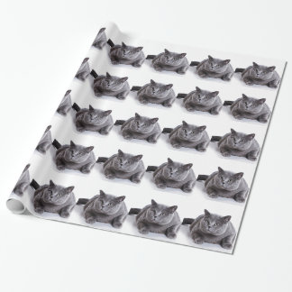 Grey Cat Wrapping Paper
