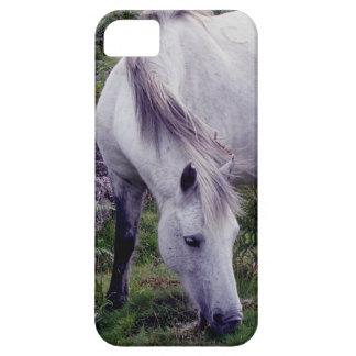Grey Dartmoor Pony Grazeing Autunm Barely There iPhone 5 Case