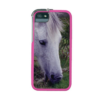 Grey Dartmoor Pony Grazing Autumn iPhone 5 Covers