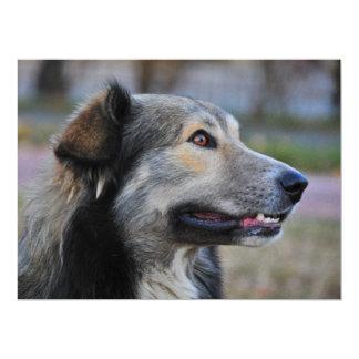 Grey dog personalized invite