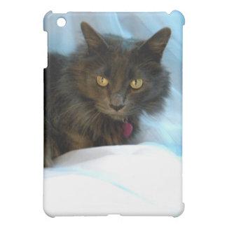 Grey Face iPad Mini Case