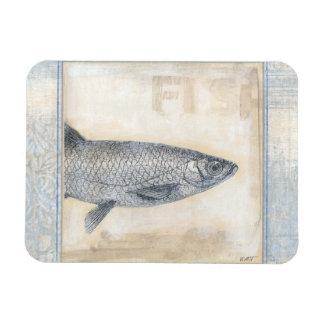 Grey Fish on Beige Background Magnet