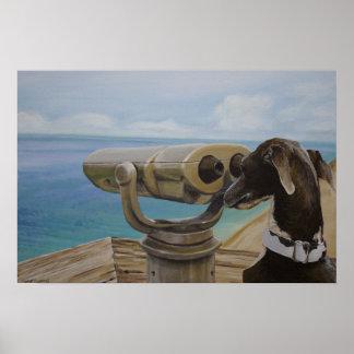 Grey Gazing - Italian Greyhound Painting Poster