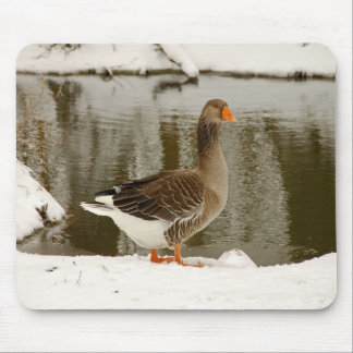 Grey goose mouse pad