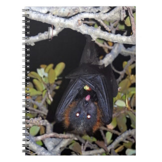Grey-Headed Flying Fox Notebook