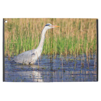"Grey heron, ardea cinerea, in a pond iPad pro 12.9"" case"