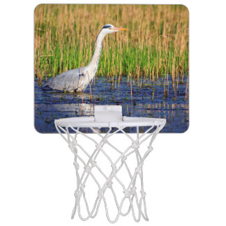 Grey heron, ardea cinerea, in a pond mini basketball hoop
