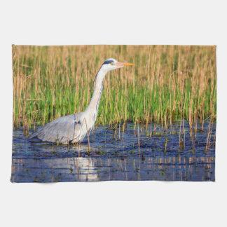 Grey heron, ardea cinerea, in a pond tea towel