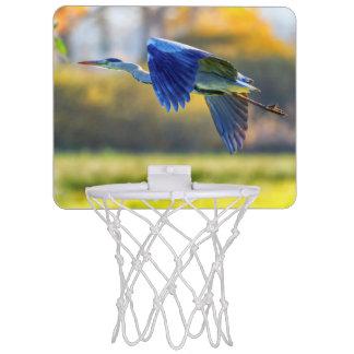 Grey heron, ardea cinerea mini basketball hoop