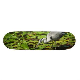 Grey Heron Ardea Cinerea Skate Boards