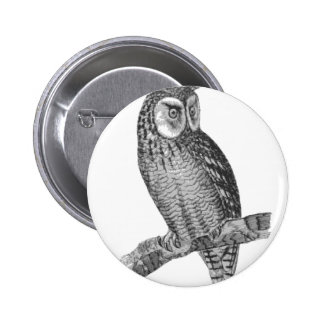 Grey Horned Owl Illustration 6 Cm Round Badge