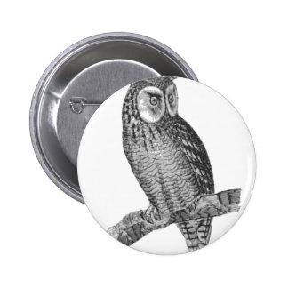 Grey Horned Owl Illustration 6 Cm Round Badge
