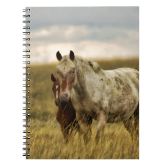 Grey Horse with Baby Notebook
