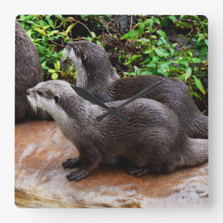 Grey Hungry Otters, Square Wall Clock