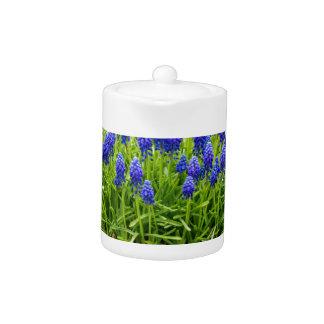 Grey metal flower box with blue grape hyacinths