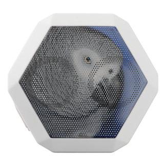 Grey Parrot White Boombot Rex Bluetooth Speaker