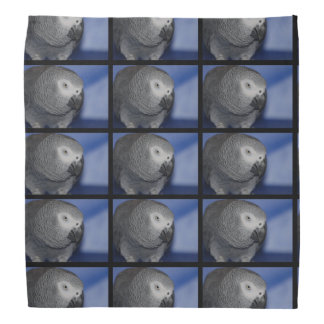 Grey Parrot Do-rag