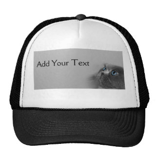 Grey Persian Cat with Blue Eyes on Grey Trucker Hats