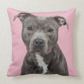 Grey pit-bull terrier portrait cushion