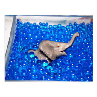 grey plastic elephant in blue balls post cards