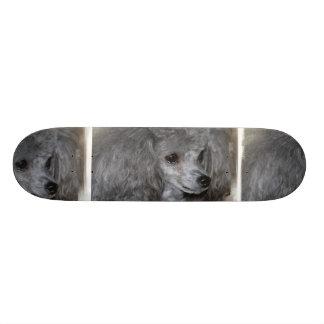 Grey Poodle Skateboard