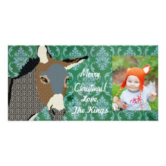 Grey s Donkey Christmas Photo Photo Greeting Card