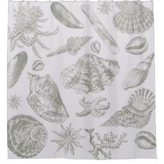 Grey Seashell Art Print Pattern Beachy Shower Curtain