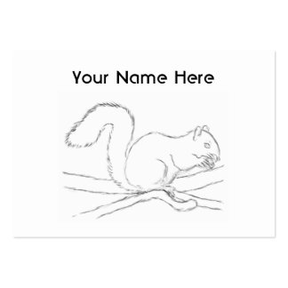 Grey Squirrel, Eating a Nut. Sketch. Pack Of Chubby Business Cards