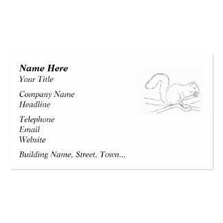 Grey Squirrel, Eating a Nut. Sketch. Business Cards