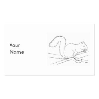 Grey Squirrel, Eating a Nut. Sketch. Pack Of Standard Business Cards