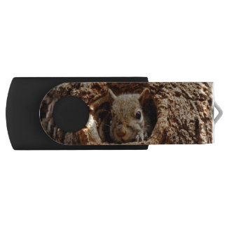 Grey Squirrel in a Hole USB Drive