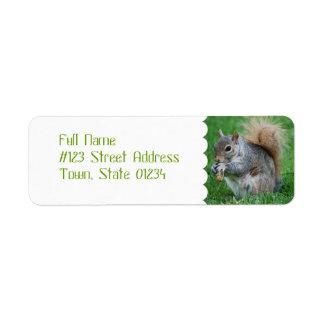 Grey Squirrel Mailing Labels