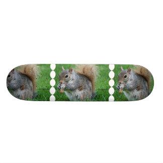 Grey Squirrel Skateboard