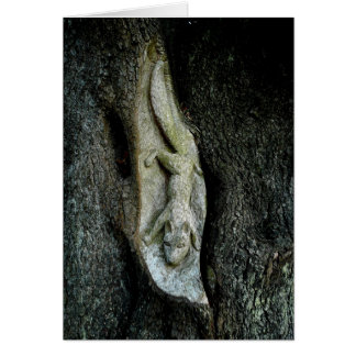 Grey Squirrel Tree Carving Greeting Cards