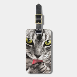 Grey Tabby cat licking paw Luggage Tag